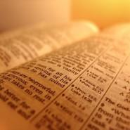 Bible Statistics
