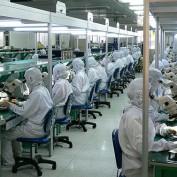 Chinese Labor Statistics