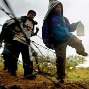 Illegal Immigrant Population Statistics