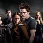 Total Twilight Franchise Sales / Revenue