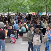 Occupy Wall Street Statistics and Demographics
