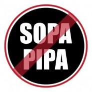SOPA and PIPA Protest Statistics