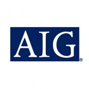 American International Group (AIG) Company Statistics