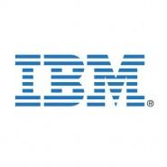 IBM Company Statistics