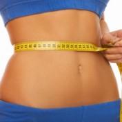Body Fat Statistics
