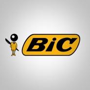 BIC Company Statistics