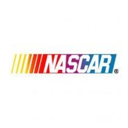 NASCAR Racing Statistics