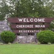 Native American Statistics