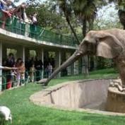 Zoo Statistics
