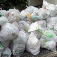 Plastic Bag Statistics