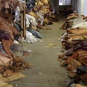 India Leather Industry Statistics