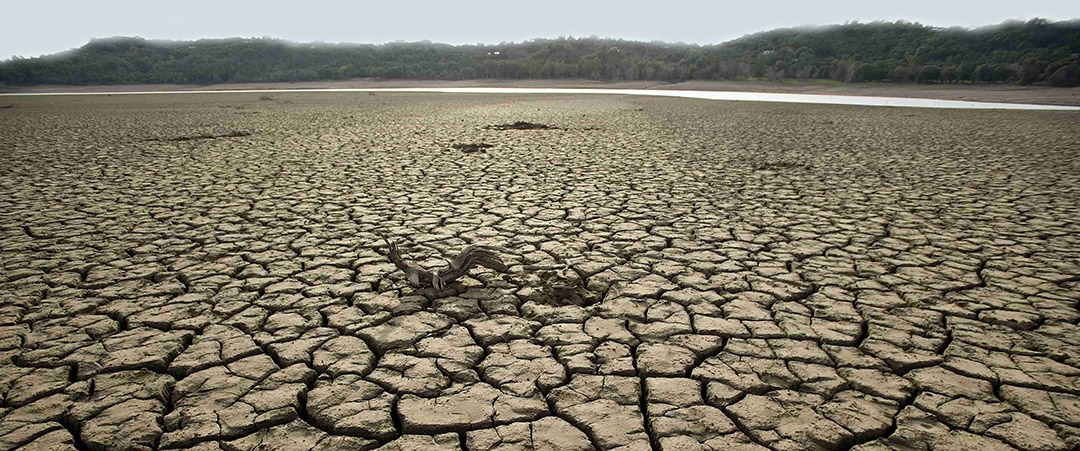 drought disaster statistics