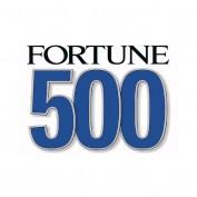 Fortune 500 Companies