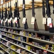 Firearm Industry Statistics