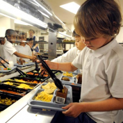 Free and Reduced Lunch Statistics