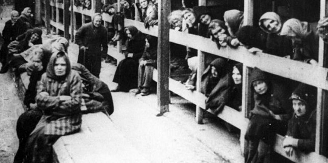 holocaust jewish statistics