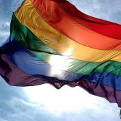 Gay Lesbian LGBT Statistics