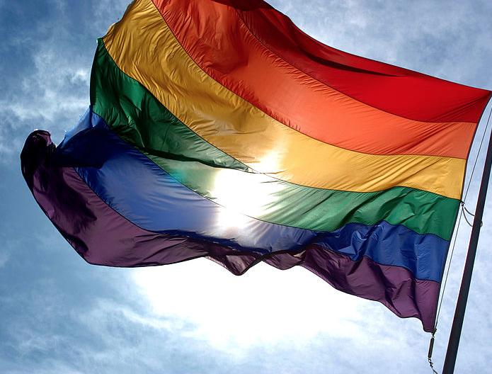 gay lesbian lgbt flag