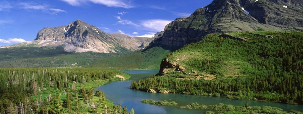 national park visitor statistics