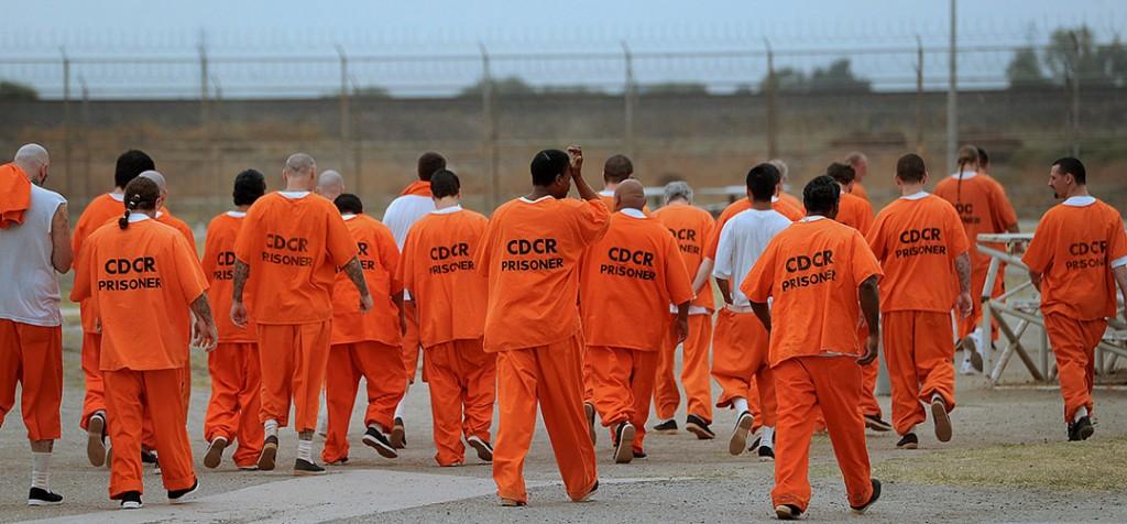 prison street gang member statistics