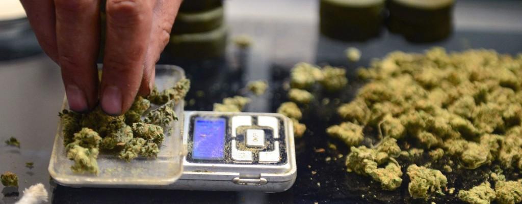 medical marijuana use statistics