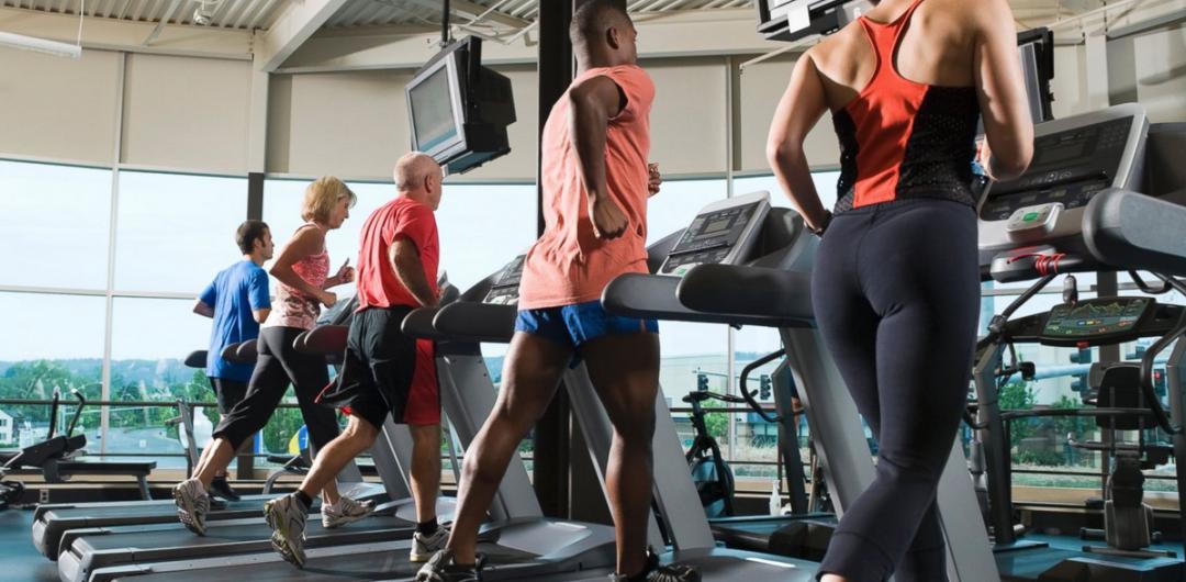gym membership statistics