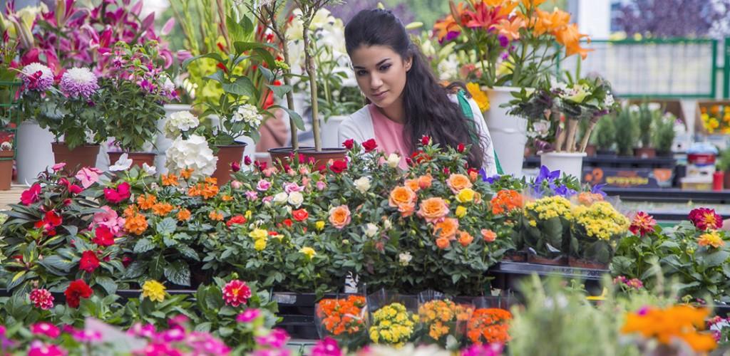 floral flower industry sales statistics