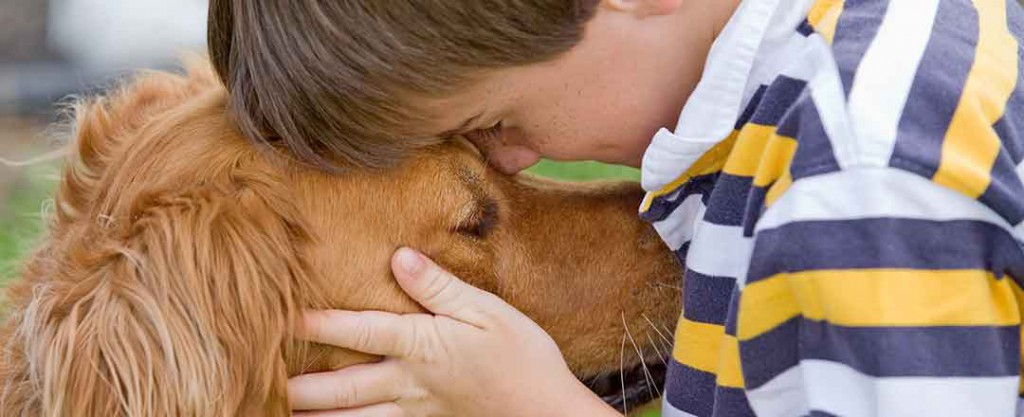 pet-ownership-statistics